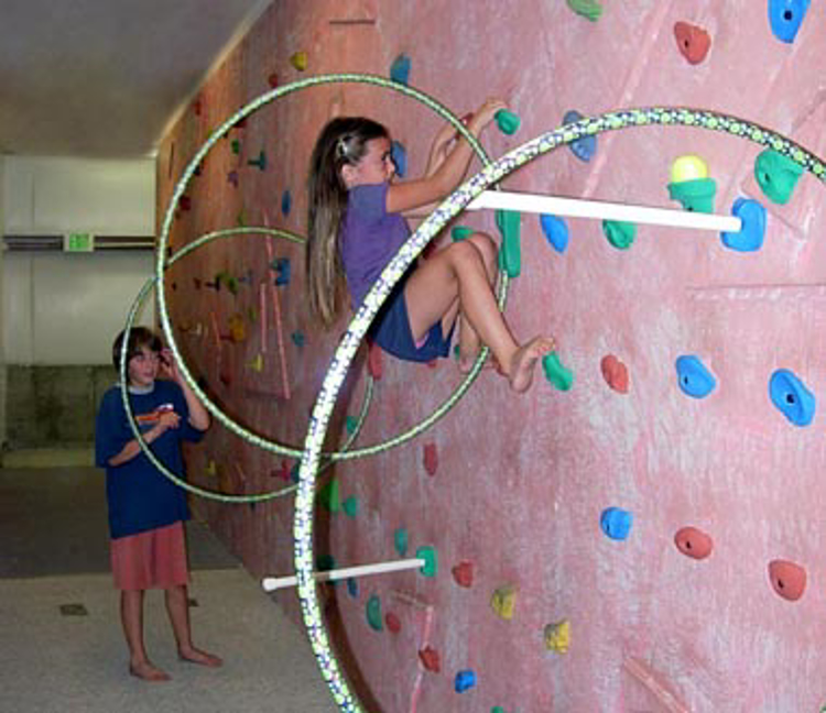 Picture of Hula Hoop, Tennis Ball, Noodle and Pole Grip Holds