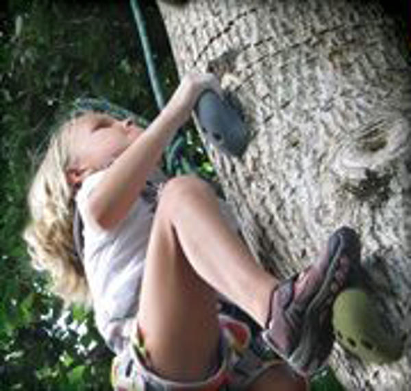 Picture for category #30. How to Attach Climbing Holds to a Tree
