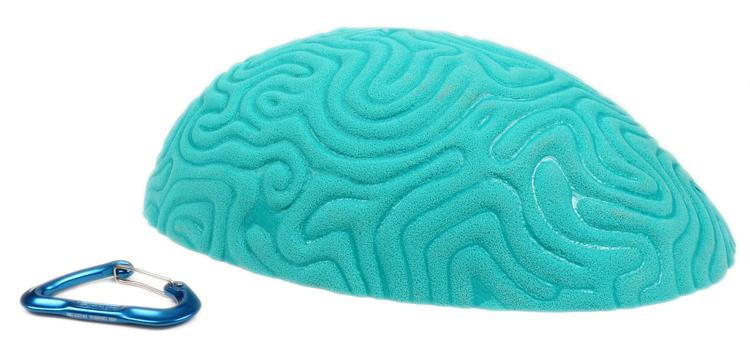 Picture of XXXL Brain Coral High Profile Sloper