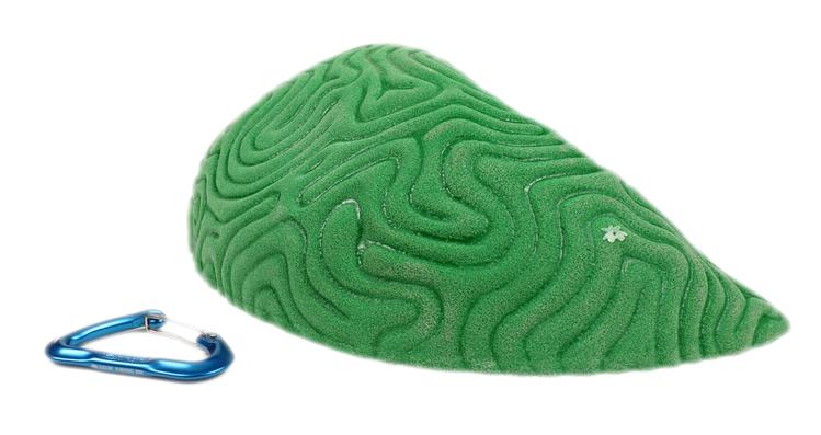 Picture of XXXL Brain Coral Organic Sloper #2