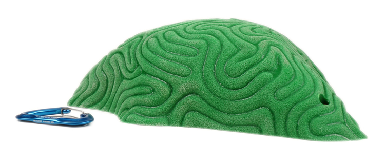 Picture of XXXL Brain Coral Organic Sloper #1