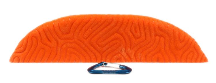 Picture of XXXL Brain Coral Ledge #4