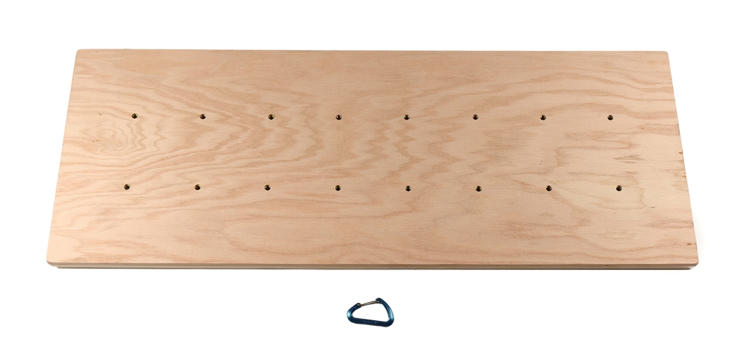 "Picture of Ninja Ceiling Panel ( 20"" x 54"" )"