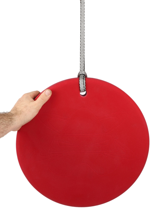 "Picture of Hanging Disk (16"")"