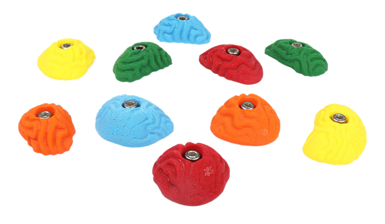 Picture of 10 Brain Coral Vertical Wall Crimps
