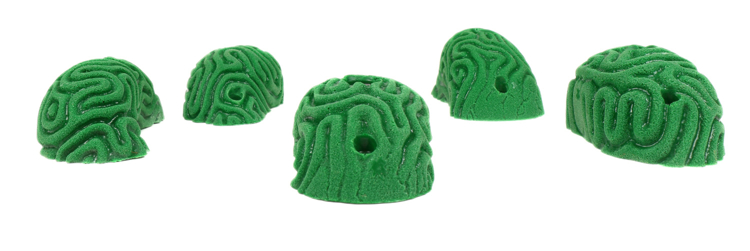 Picture of 5 Large Brain Coral Pinches #2