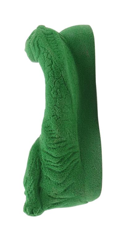 Picture of Brontosaurus